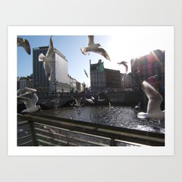 Dublin City Seagulls (Liffey) Art Print