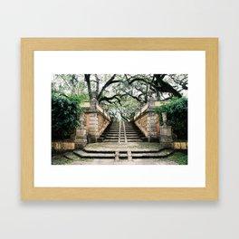 Viscaya Garden Framed Art Print