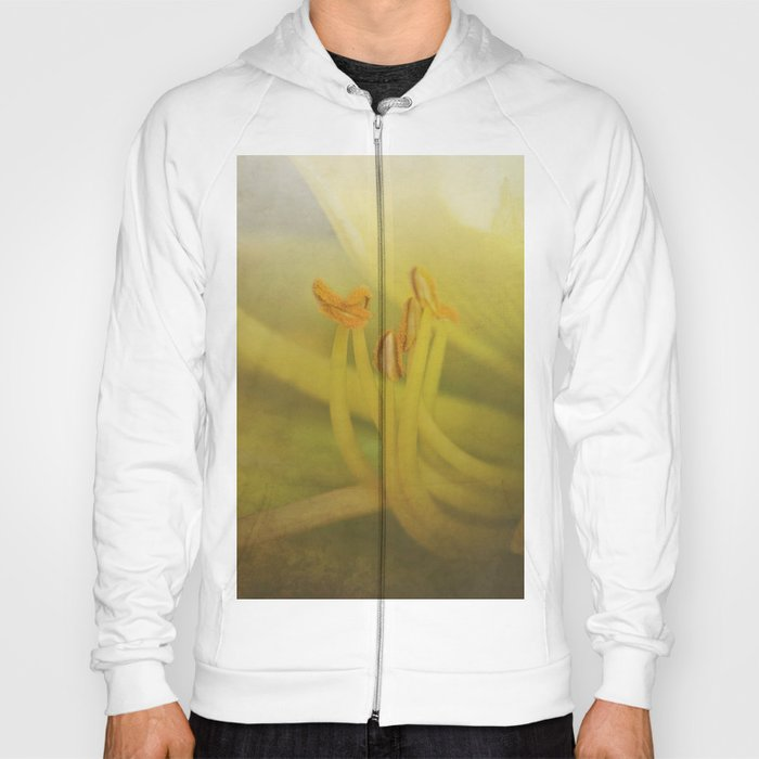Day lily dance.... Hoody