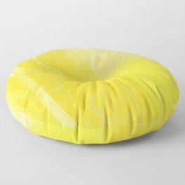 Agility Floor Pillow