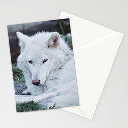 Alaskan Wolf Stationery Cards