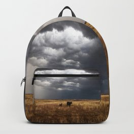 Life on the Plains - Cow Watches Over Playful Calf in Oklahoma Backpack