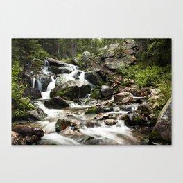 Beautiful Tributary Landscape Canvas Print