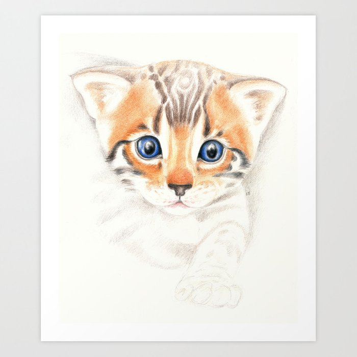 Cute Bengal Kitten Colored Pencil Art Art Print By Eveystudios