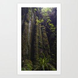 Winchead Cave Entrance II, Charleston, Buller, New Zealand Art Print