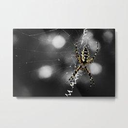 Banana Spider Macro Color Pop Metal Print