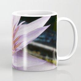 Nymphaea 'Rhonda Kay' III Coffee Mug