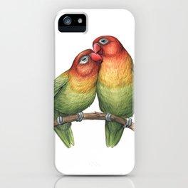 Fischer's Lovebird (Agapornis fischeri) iPhone Case