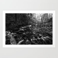 Oregon Stream in Black & White Art Print