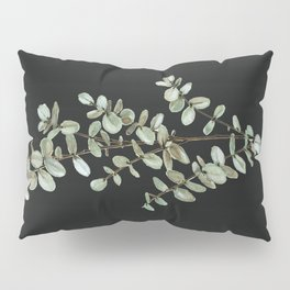 Baby Blue Eucalyptus Watercolor Painting on Charcoal Pillow Sham