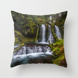 Image USA Silver Falls State Park Nature Waterfalls park Moss Parks Throw Pillow