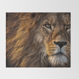 Majestic Lion Throw Blanket