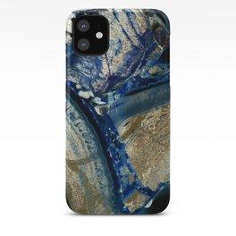 Earthly Pleasures II iPhone Case