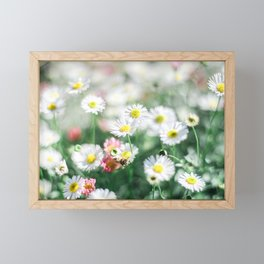 Bright field of daisies | Nature photography | Dine art photography | Art Print Framed Mini Art Print