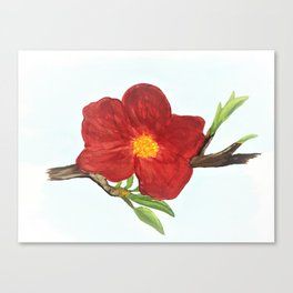 Bright Red Plumb Blossom Canvas Print