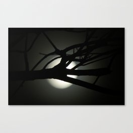Tree and Moon Silhouette Canvas Print