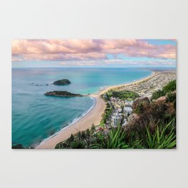 View from the Mount Canvas Print