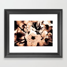 Cream Framed Art Print