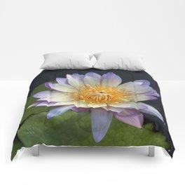 Golden Hue Comforters