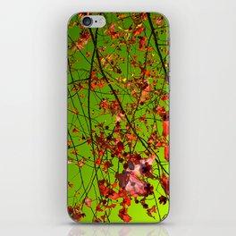 red tree IV iPhone Skin
