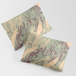 Topography Map Art- Turquoise Mauve Marble Pillow Sham