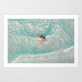 Rhine Shell Art Print