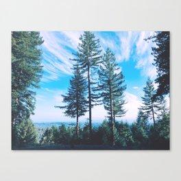 Santa Cruz Three Trees Mountains Canvas Print
