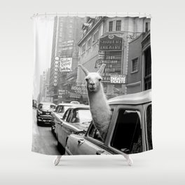 Llama Riding in Taxi, Black and White Vintage Print Shower Curtain