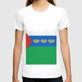 flag of Tyumen T-shirt