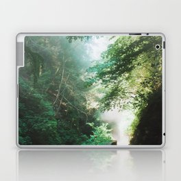 Into The Mist 1 Laptop & iPad Skin