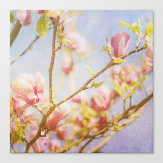 Spring Days Canvas Print