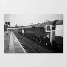 Westbury Logs Canvas Print