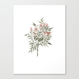 Small Floral Branch Canvas Print