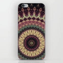 Mandala 273 iPhone Skin