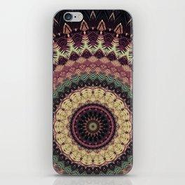 Mandala 273 iPhone Skin