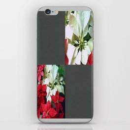 Mixed color Poinsettias 1 Blank Q6F0 iPhone Skin