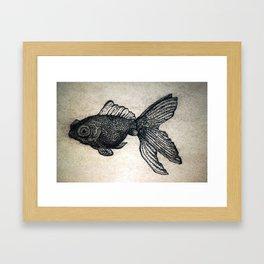 The Solitary Goldfish Framed Art Print