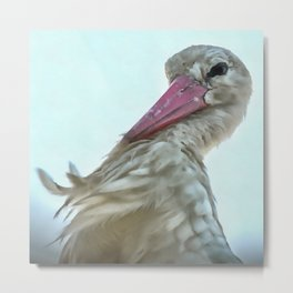 White Stork With Incredulous Expression Metal Print