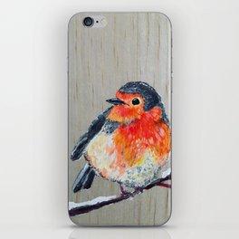 Winter Robin iPhone Skin