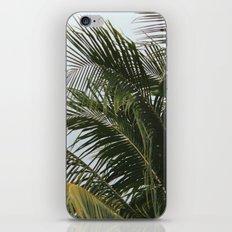 PALMY iPhone & iPod Skin