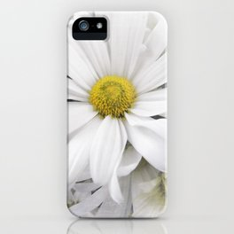 White African Daisy at Barthels Farm Market iPhone Case