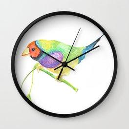 lady gouldian finch Wall Clock