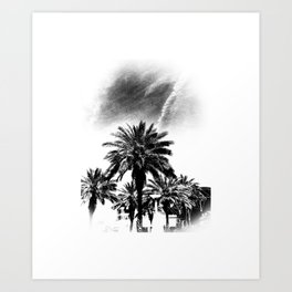 Palms Trees in Downtown  Art Print