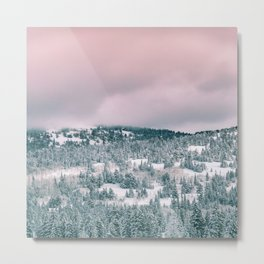 Blush Sky in Woodland Heights Metal Print