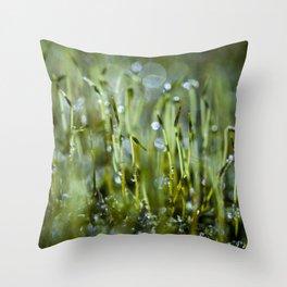 dewy morning Throw Pillow