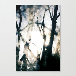 Blurry Trees Canvas Print