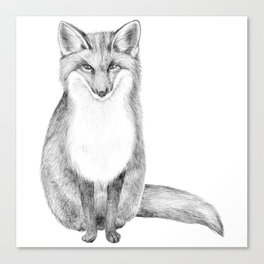 Scandinavian Fox Canvas Print