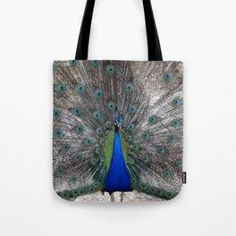 peacock bird animals pen plumage Tote Bag