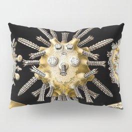 Ernst Haeckel Echinidea Sea Urchin Pillow Sham
