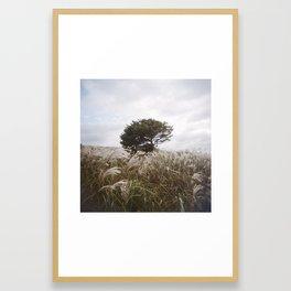 THE TREE II (2017) Framed Art Print